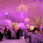 Starlight Marquee Lining_Danco Plc Wedding