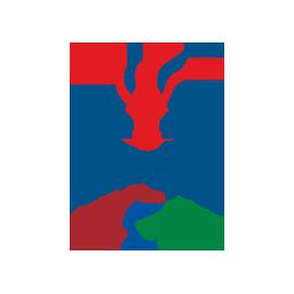 Paralympics GB Logo